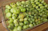Verde, tomate y tocino Jam