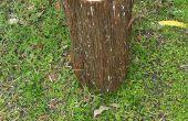 Recipiente de madera de cedro Registro