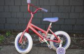 Bicicleta del brillo