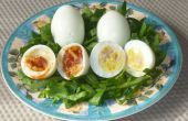 Llena de huevos (sin yema)
