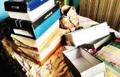 Muebles de cajas de zapatos!