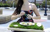 Bandeja de almuerzo de hierba
