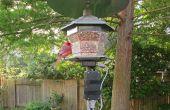 Monitor del alimentador de aves