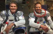 Cómo enviar a David Hasselhoff y Ian Ziering al espacio para luchar contra tiburones para $150