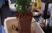 Hidropónico por goteo cultivo Starter Kit (con chiles)