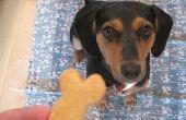 DIY galletas de perro