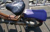 Ciclomotor de compañero de asiento