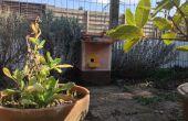 Construir una caja nido de abejorros