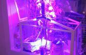 BRICOLAJE plantas crece la luz