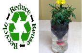 Reciclado botella de auto riego hidroponía