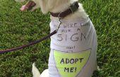 No-cosa fácil reciclado perro camiseta