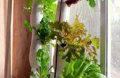 Granja hidropónica de ventana