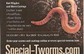 Especial-tworms.com/rojos gusanos / worms/gusanos de compostaje/