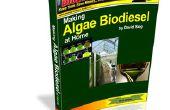 Hacer Biodiesel de algas en el país