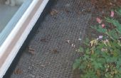 Jardín de caca de anti-gato