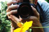 Fotografía-la guía de fotos