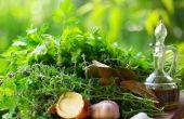 Remiedies naturales (hierbas y especias)