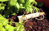 Cuchillo de supervivencia navaja