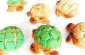 Tortuga pan: Conchas de Tortuga