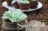 Cupcakes de terrario suculenta comestible!