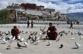 Consejos: aclimatarse a la altura en los dos primeros días en Lhasa.1