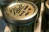Canning Dilly judías verdes encurtidos