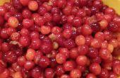 Mermelada de cereza casera: Del árbol al bote