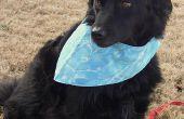 Reversible Bandana perro