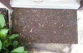 Crecer una alfombra de jardín
