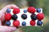 Tartas de frutas cinco minutos
