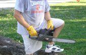 Cómo cortar a un árbol