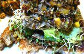Hamburguesas de Quinoa picante Tilapia en costra de almendras