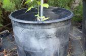 Rescatado de contenedores de jardín