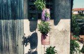 Plantador de barril de cerveza 5l - actualización de jardín VERTICAL -