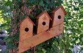Cómo construir un condominio de pájaro noruego de un 2 X 4