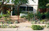 Convertir su patio en un jardín