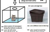 Niño y perro seguro coche basura bandeja