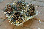 Arrancador de fogata de piña