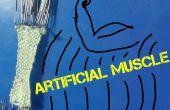 Músculo artificial bricolaje