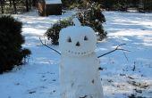 Jack-O-nieve - muñeco de nieve de Halloween