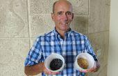 Una guía de brote: su fácil acceso a alimentos saludables en casa