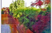 Diseño de jardín en la azotea: Ohm Sweet Ohm
