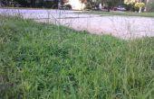 Látigo de la hierba / cortador de malezas