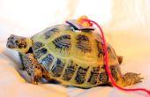 Perseguidor de la tortuga (versión analógica)