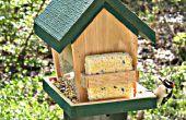 Construir este comedero y frialdad hacia fuera de la observación de aves