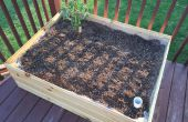 Sub irrigación Planter Box