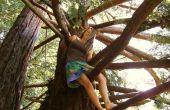 Árbol de escalada con una falda