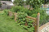 Riego automático de jardín