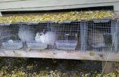 Aparador de conejo de interior/al aire libre