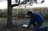 Kit de bricolaje de geocache-un-bosque